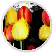 Painted Country Tulips Round Beach Towel