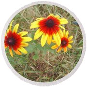 Painted Daisies Round Beach Towel