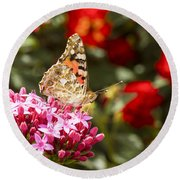 Painted Lady Butterfly Round Beach Towel by Eyal Bartov