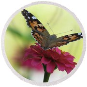 Painted Lady Butterfly On Zinnia Round Beach Towel
