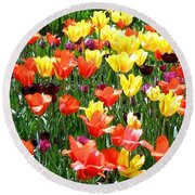 Painted Sunlit Tulips Round Beach Towel