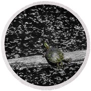 Painted Turtle In A Monochrome World Round Beach Towel