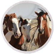 Painted Wild Horses Round Beach Towel