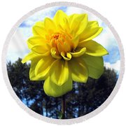 Painted Yellow Dahlia Round Beach Towel