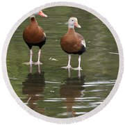 Pair Black-bellied Whistling-ducks Round Beach Towel