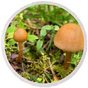 Pair O Mushrooms Round Beach Towel