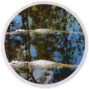 Pair Of American Alligators Round Beach Towel