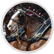 Pair Of Budweiser Clydesdale Horses In Harness Usa Rodeo Round Beach Towel