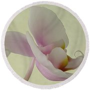 Pale Orchid On Cream Round Beach Towel
