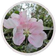 Pale Pink Crabapple Blossom Round Beach Towel