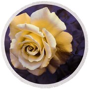 Pale Yellow Rose Round Beach Towel