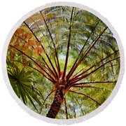 Palm Canopy Round Beach Towel