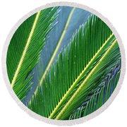 Palm Cycas Fronds Round Beach Towel