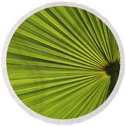 Palm Fron Abstract Round Beach Towel