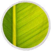 Palm Leaf Macro Abstract Round Beach Towel