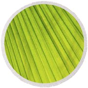 Palm Tree Leaf Abstract Round Beach Towel