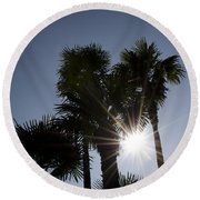 Palm Trees In Backlit Round Beach Towel