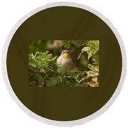 Palm Warbler Round Beach Towel