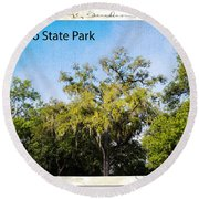 Palmetto State Park Round Beach Towel