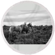 Palomino - Buttes - Wild Horses - Bw Round Beach Towel
