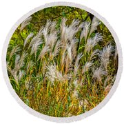 Pampas Grass Round Beach Towel