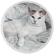 Pampered Pet Round Beach Towel