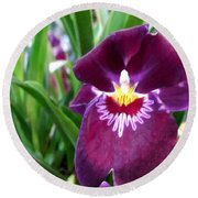 Pancy Orchid Round Beach Towel