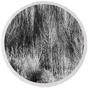 Panorama Winter Trees B And W Round Beach Towel