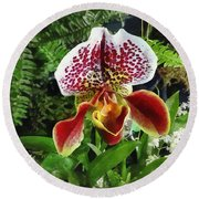 Paph Fiordland Sunset Orchid Round Beach Towel