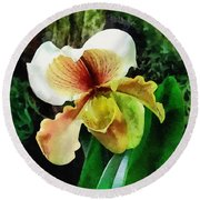 Paph Hellas Westonbirt Orchid Round Beach Towel