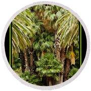 Park Palms Round Beach Towel