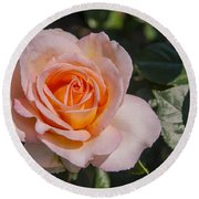 Parnell Pink Rose Round Beach Towel