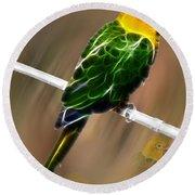 Parrot Beauty Digital Artwork Round Beach Towel