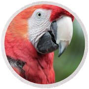 Parrot Profile Round Beach Towel