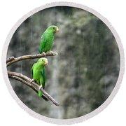 Parrots In The Rain Round Beach Towel