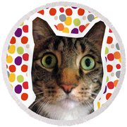 Party Animal - Smaller Cat With Confetti Round Beach Towel by Linda Woods