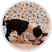 Party On Puppy Round Beach Towel