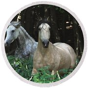 Paso Fino Mares Pay Attention Round Beach Towel