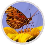Passion Butterfly On The Mexican Sunflower Round Beach Towel