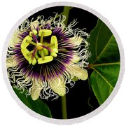 Passion Flower Round Beach Towel by James Temple