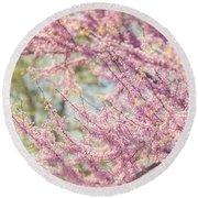 Pastel Pink Flowers Of Redbud Tree In Springtime  Round Beach Towel by Lisa Russo