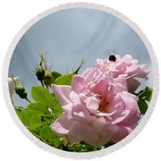 Pastel Pink Roses With Bee Round Beach Towel