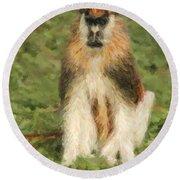 Patas Monkey Erythrocebus Patas  Round Beach Towel