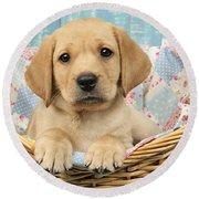 Patchwork Puppy Dp793 Round Beach Towel by Greg Cuddiford