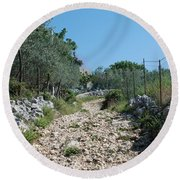Path Among Olive Trees Round Beach Towel