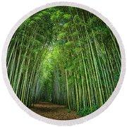 Path Through Bamboo Forest E139 Round Beach Towel
