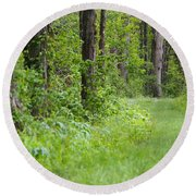 Path To The Green Forest Round Beach Towel