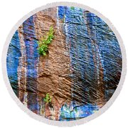 Pattern On Wet Canyon Wall From River Walk In Zion Canyon In Zion National Park-utah  Round Beach Towel