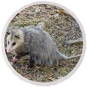 Pawing Possum Round Beach Towel
