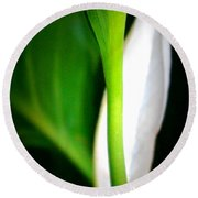Peaceful Lily Round Beach Towel